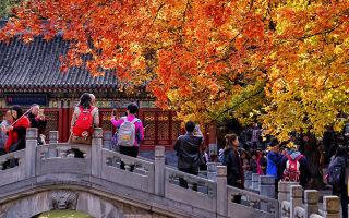 Китай в ноябре – куда поехать и стоит ли