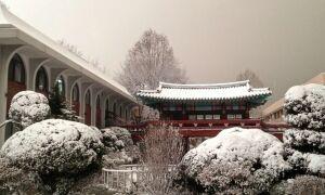 Какой климат в Китае – погода по месяцам