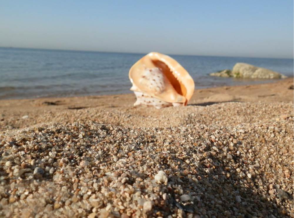 Море и пляжи Бейдайхэ