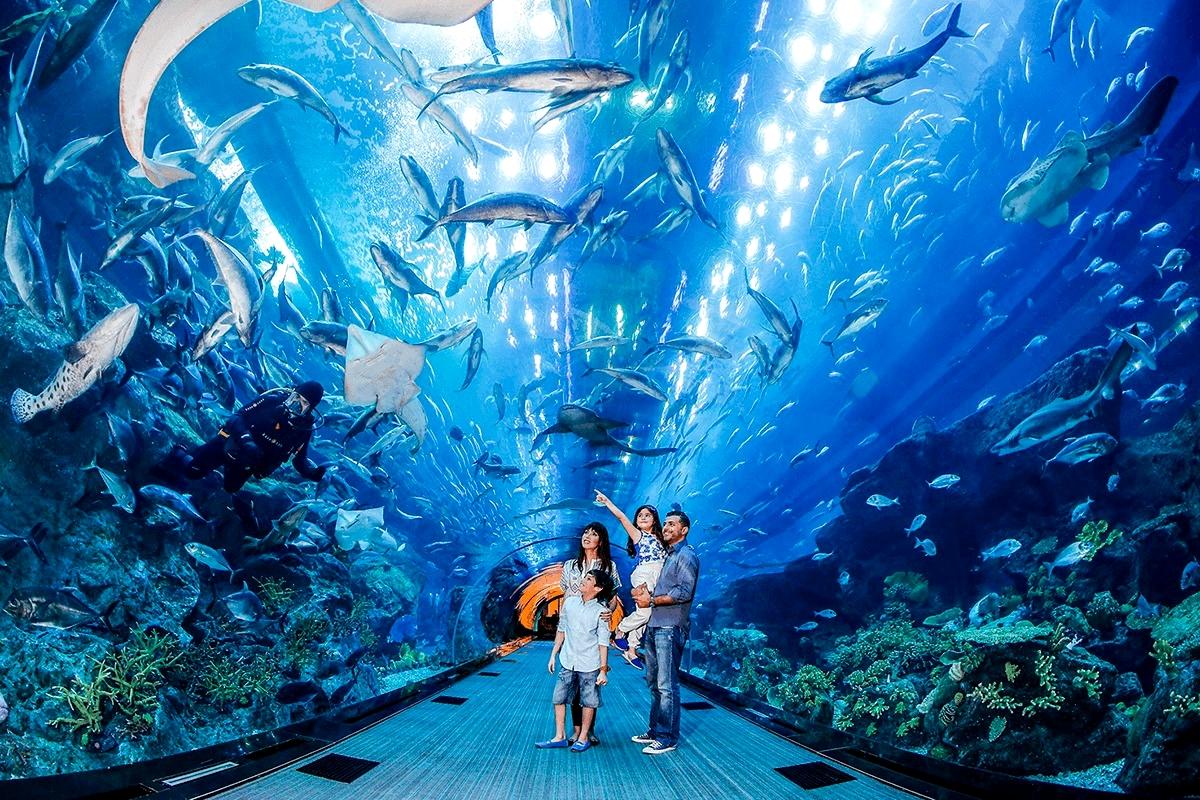 Старинный океанариум «Подводный мир»