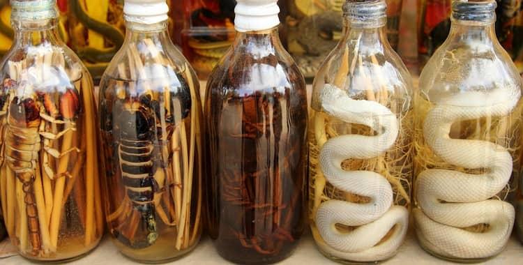 водка со змеей в бутылке