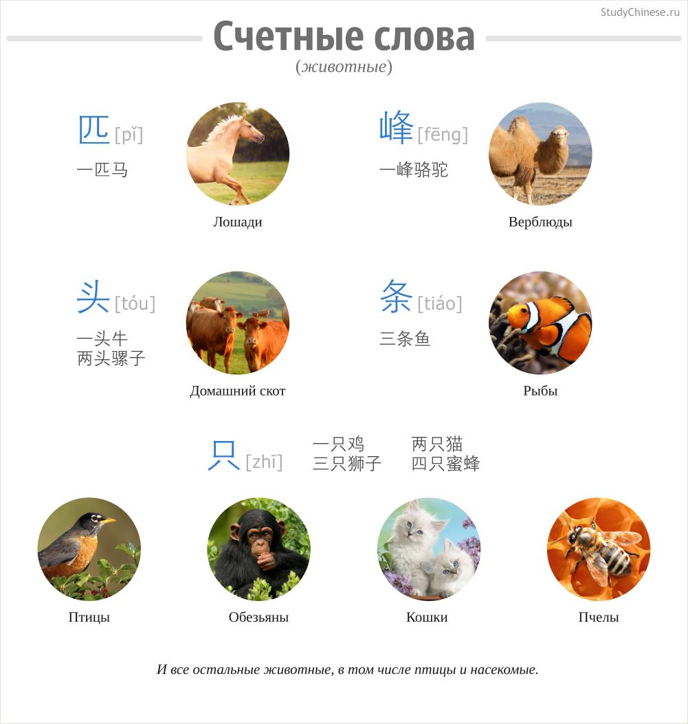 Счетные слова в китайском языке