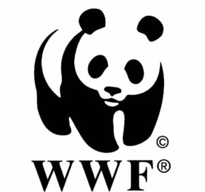 Значок панды